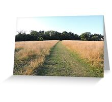 Golden Grasses: Path of Dreams Greeting Card