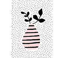 Pink Stripes and Branches Photographic Print