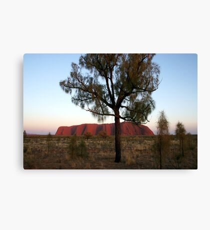 Uluru and the Tree Canvas Print