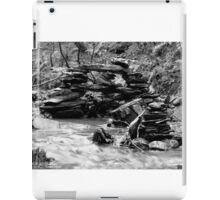 Zen Bridge iPad Case/Skin