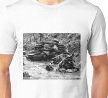 Zen Bridge Unisex T-Shirt