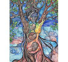 Tree of Life - Cha Wakan Photographic Print