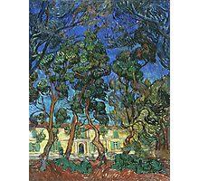 Vincent Van Gogh -  Grounds Of  Asylum, 1889 Photographic Print