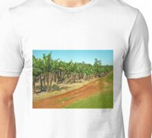 Innisfail Banana Plantation Unisex T-Shirt
