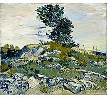 Vincent Van Gogh -  Rocks, 1888  Photographic Print