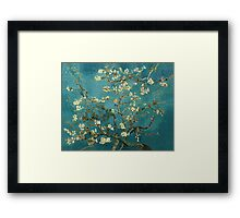 Blossoming Almond Tree Framed Print