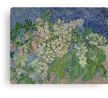 Vincent Van Gogh - Blossoming Chestnut Branches 1890 Canvas Print