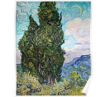 Vincent Van Gogh - Cypresses 1989  Poster
