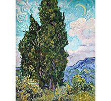 Vincent Van Gogh - Cypresses 1989  Photographic Print