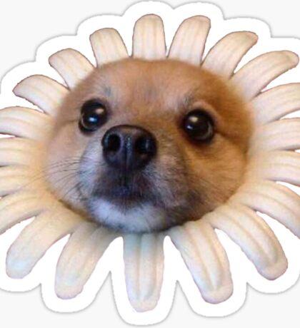 Doggo Stickers: Flower Doggo Sticker