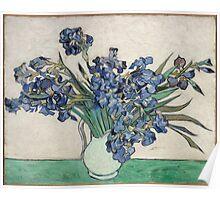 Vincent Van Gogh - Irises, 1890 Poster
