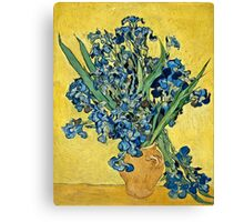 Vincent Van Gogh - Irises, May 1890 - 1890  Canvas Print