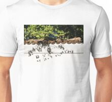 Patterned Sunshine - Ginkgo Shadows on a White Stucco Wall  Unisex T-Shirt