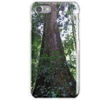 Strangler Fig iPhone Case/Skin