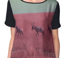 Hartebeest in Red Chiffon Top