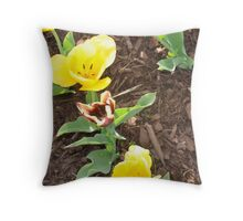 Tulips Aerial Shot Throw Pillow