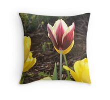 Tulip Hide and Seek Throw Pillow