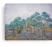 Vincent Van Gogh - Olive Picking, 1889 02 Canvas Print