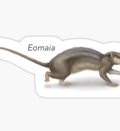 Eomaia Sticker
