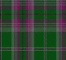 00055 Gray Clan (Hunting) Tartan  by Detnecs2013