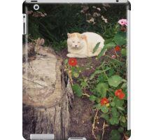 Sleeping Cat In A Flower Bed iPad Case/Skin