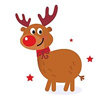 Christmas red nose reindeer Photographic Print