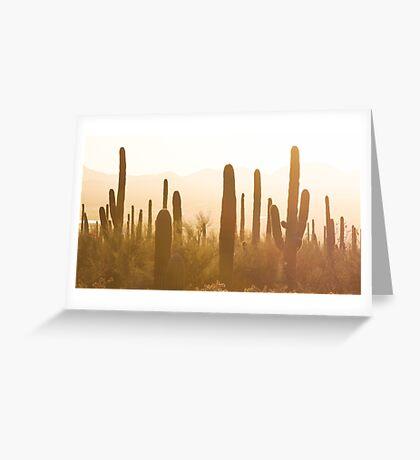 Amazing Sunset Image of Saguaro National Park Greeting Card