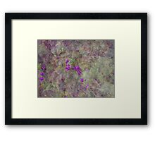 Florida Beautyberry Framed Print