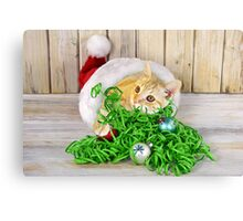 Christmas cat in hat Canvas Print