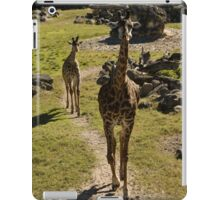 Giraffe Mom and Baby Calf iPad Case/Skin
