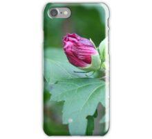 Best Buds iPhone Case/Skin