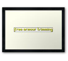 Runescape - Free Armour Trimming Framed Print