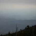 Mount Mitchell View by satousmuses