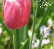 Thank You Card - Pink Tulip by VivianRay