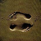 yin yang travel by SKVee