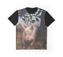 Surrey Docks City Farm - Pig Graphic T-Shirt