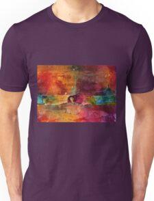 Over 50 Birthday Celebration Unisex T-Shirt