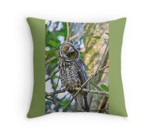 Curious Juvenile Long-eared Owl Throw Pillow