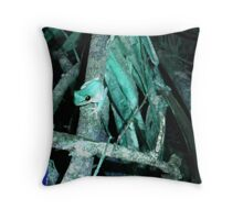 Frog in Turquoise Throw Pillow