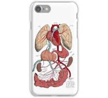 Guts and Glory  iPhone Case/Skin