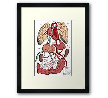 Guts and Glory  Framed Print