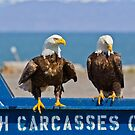 Homer's Solid Waste Workers - Bald Eagles by Tom Talbott