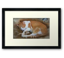 Still Sleepy Framed Print