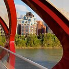 View from Peace Bridge by ldredge
