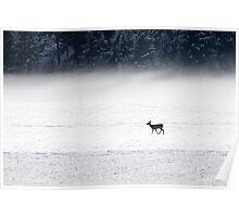 Snow & Fog Poster