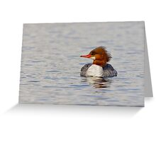 You look marvelous! -- Common Merganser Greeting Card