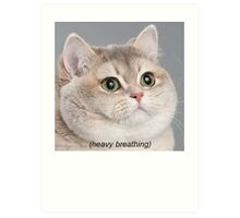Heavy Breathing Cat Art Print