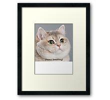 Heavy Breathing Cat Framed Print