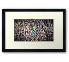 Leaf/Wood Framed Print