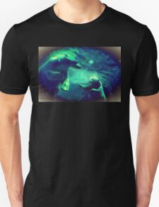 Polar Plunge Unisex T-Shirt